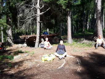 Il FOREST BATHING